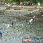 Looe Duck Race 2009 - 19