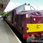 14-Steam-Train-Looe
