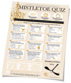 Mistletoe Christmas Quiz