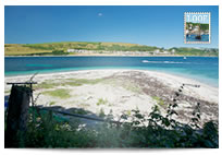 Looe from Looe Island postcard